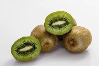 Auckland kiwifruit-400143__340